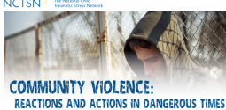 Community Violence: Reactions and Actions in Dangerous Times