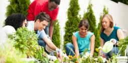 Teens volunteering in garden